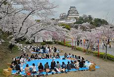 Japan Photos (except Tokyo, Kyoto)