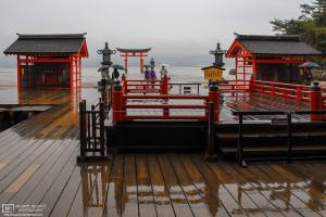 Rainy Reflections, Itsukushima Shrine, Miyajima, Japan Photo