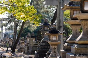 Stone Lanterns, Kitano Tenmangu, Kyoto, Japan Photo