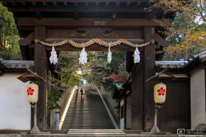 Ascent, Shinonome Jinja, Matsuyama, Shikoku, Japan Photo