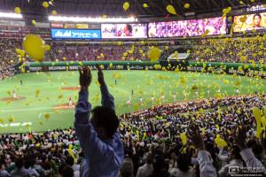 At the Baseball Game, Yafuoku Dome, Fukuoka, Japan Photo