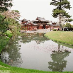 Byodoin Temple, Uji, Japan Photo