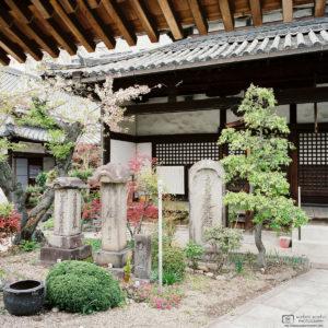 Looking through the Gate, Jotokuji Temple, Nara, Japan Photo
