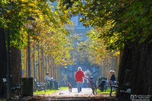 Autumn Walk, Stadtpark (City Park), Graz, Austria Photo