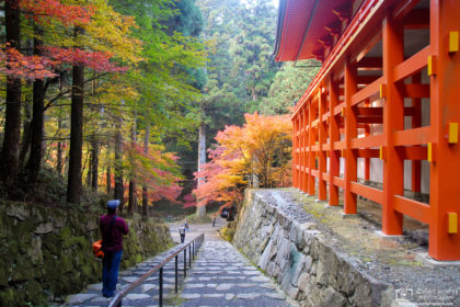 An autumn impression from Enryakuji Temple (延暦寺), located to the northeast of Kyoto on Mount Hiei in Ōtsu, Japan.
