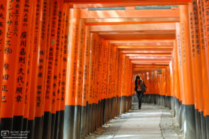 Encounter, Fushimi Inari Taisha, Kyoto, Japan Photo