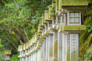 Stone Lanterns, Yugasan Rendaiji Temple, Kurashiki, Japan Photo