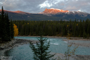 Afternoon Light, Athabasca River, Jasper National Park, Canada Photo