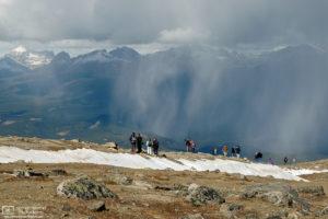 Rainwatching, Whistler's Mountain, Jasper National Park, Canada Photo