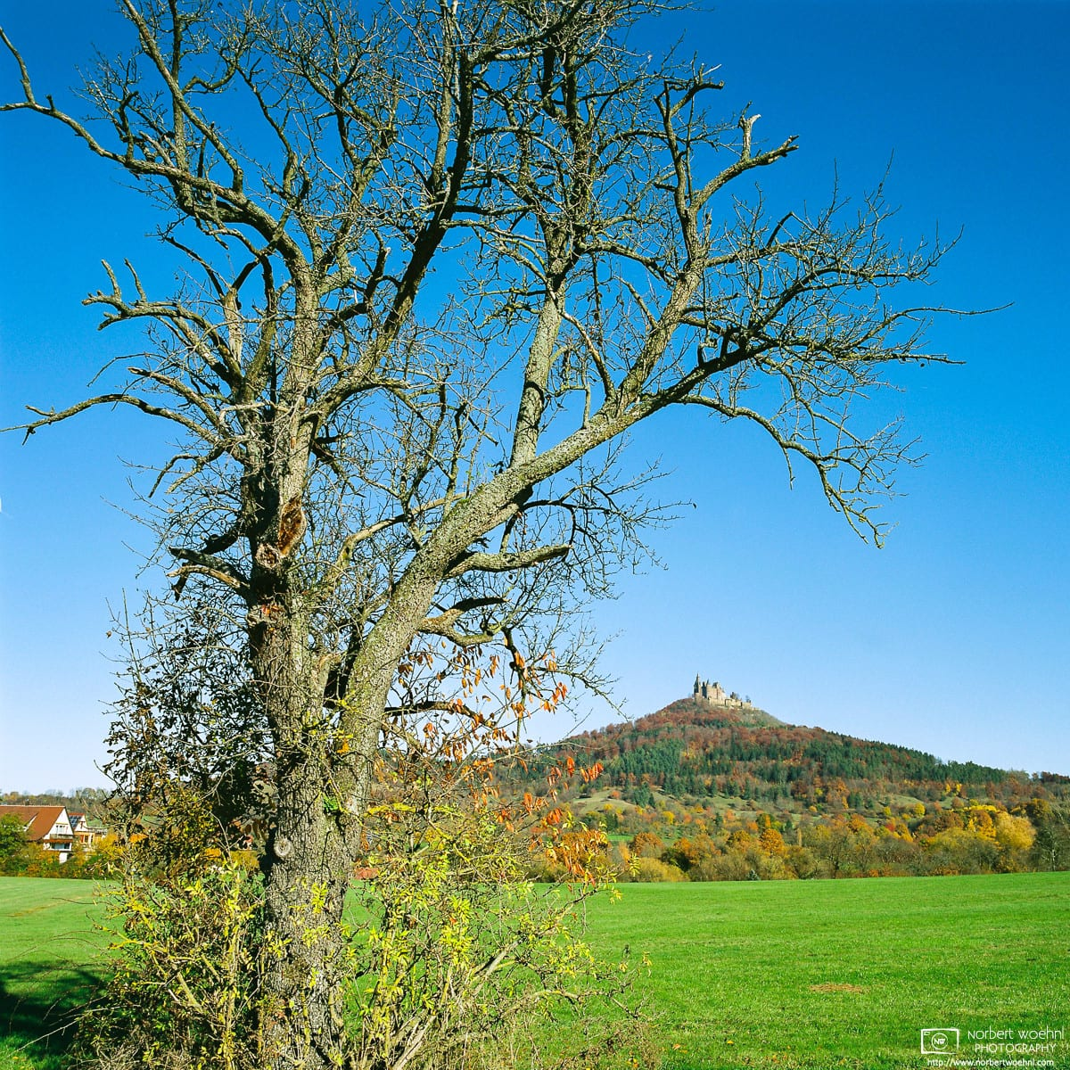 Autumn View of Hohenzollern Castle, Bisingen, Germany Photo