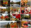 Norbert Woehnl Photography - Digital Portfolio Autumn in Japan