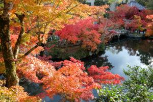 Autumn at Eikando Zenrinji Temple, Kyoto, Japan Photo