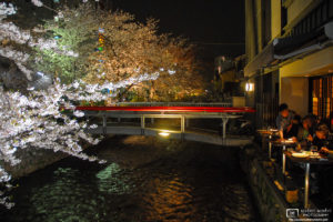 Dinner with a view of illuminated cherry blossoms in the Gion district of Kyoto, Japan.