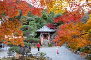 Autumn at Nison-in Temple, Sagano, Kyoto, Japan Photo