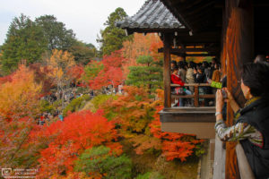 Tsutenkyo Bridge at Tofukuji Temple (東福寺) in Kyoto, Japan, becomes one of the city's most busy spots in autumn.