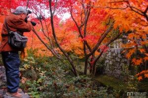 Autumn at Tofukuji Temple, Kyoto, Japan Photo