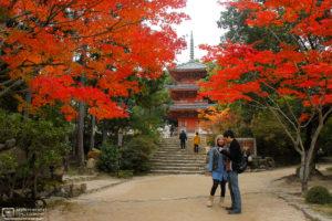 Autumn at Hofukuji Temple, Soja, Okayama Prefecture, Japan Photo