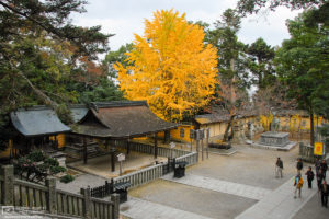 Autumn at Konpira-san Shrine, Kotohira, Shikoku, Japan Photo