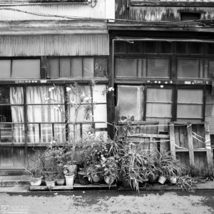 Photowalk through Taito-ku, Tokyo, Japan - Image no. 3