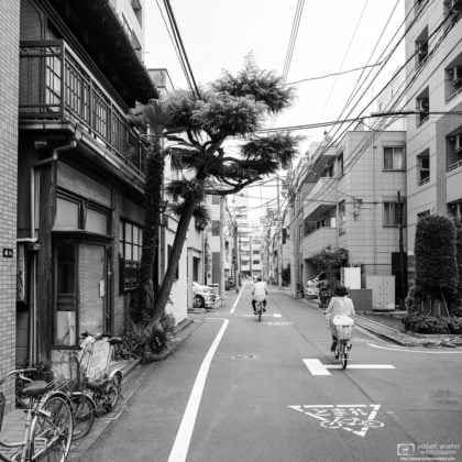 Bicycling past a leaning tree in this quiet neighborhood in Taito-ku, Tokyo, Japan.