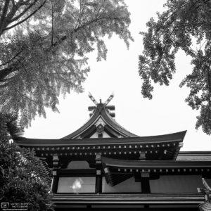 Photowalk through Taito-ku, Tokyo, Japan - Image no. 21