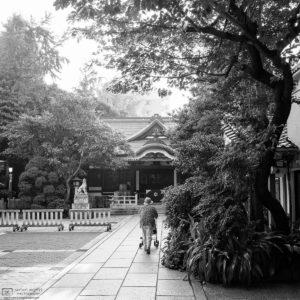 Photowalk through Taito-ku, Tokyo, Japan - Image no. 23