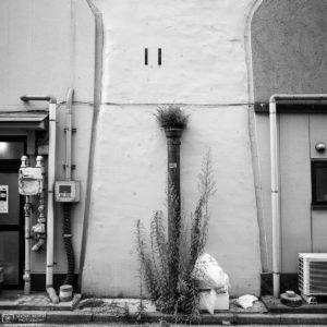 Photowalk through Taito-ku, Tokyo, Japan - Image no. 35
