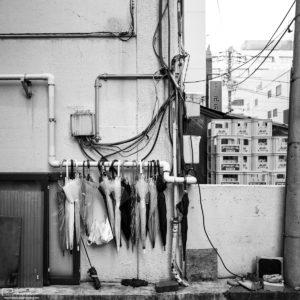 Photowalk through Taito-ku, Tokyo, Japan - Image no. 36