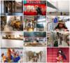 Norbert Woehnl Photography - Digital Portfolio Japan Street Photography