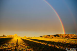 On a late autumn afternoon, a rainbow rises over the fields outside Pliezhausen in southwestern Germany.