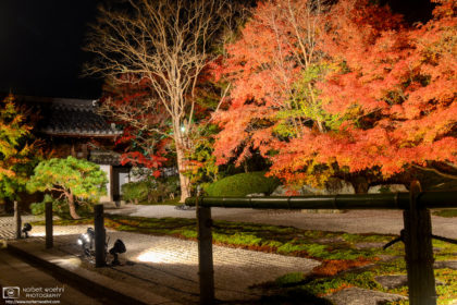 Autumn Illumination at Tenju-an, a side temple of Nanzen-ji in the Higashiyama district of Kyoto, Japan.