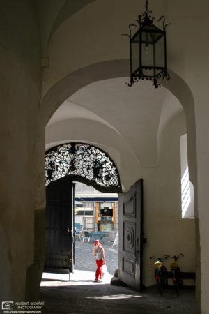The Woman in Red, Saurau Palace, Graz, Austria Photo