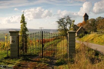 An autumn impression taken in the vineyards around Lichtenberg Castle in southwestern Germany.