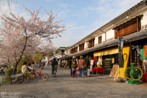 Cherry Blossoms and Shops, Bikan Historical Area, Kurashiki, Japan Photo