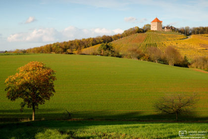 An autumn impression from the orchards around Wildeck Castle near the southwest-German village of Abstatt.
