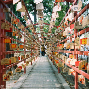 Ema (絵馬; wishing plaques) at Sanada Shrine, located on the grounds of Ueda Castle in Nagano Prefecture, Japan.