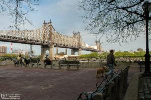 View of 59th Street Bridge from Queensbridge Park, New York City, USA.