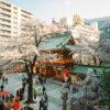 Cherry blossom season at Kanda Myōjin in Tokyo, a Shinto shrine whose origins date back to the 8th century.