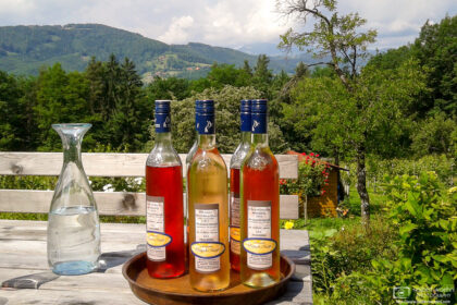 Sampling a selection of Schilcher wines at a local winery in Bad Gams, Western Styria, Austria.