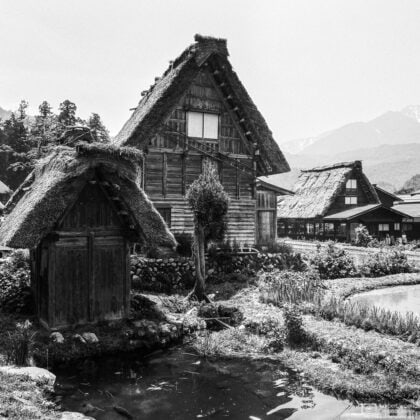A view of some typical thatched-roof houses and barns at Shirakawago in Gifu Prefecture, Japan.