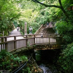 Approaching Nanzoin Temple in Sasaguri, Fukuoka, Japan, on a nice summer day.