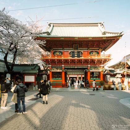 Zuishin-mon Gate at Kanda Myojin Shrine in Tokyo, Japan, was built as recently as 1975.